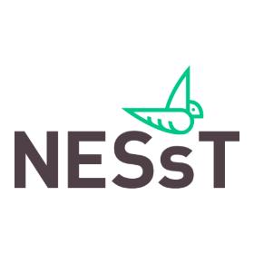 Logo: Nesst Polska