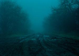 Zdjęcie pracy: Dawid Szablewski - Autostrada wolności 1